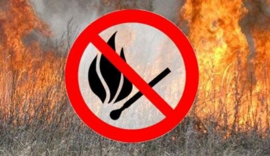 Про заборону спалювання сухої рослинності
